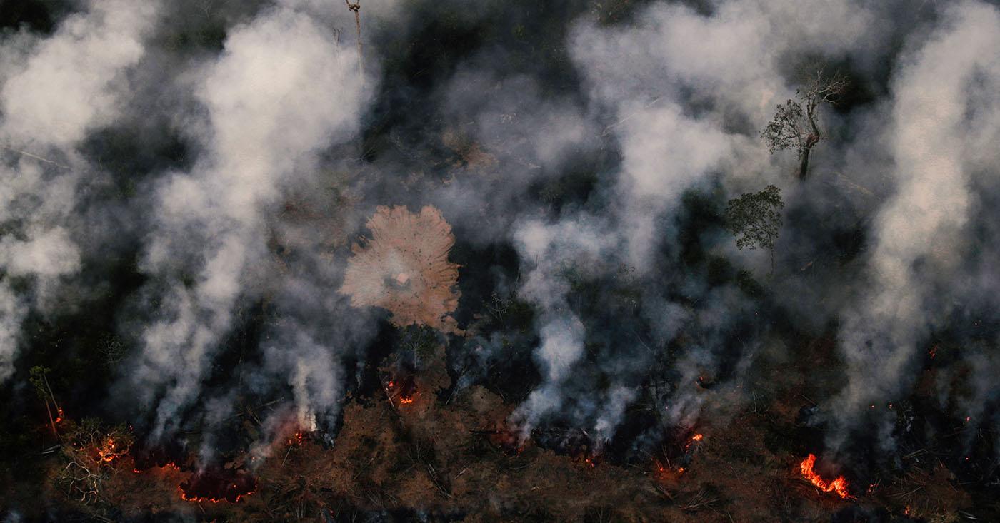 Mercosur stoppen - Amazonas retten!