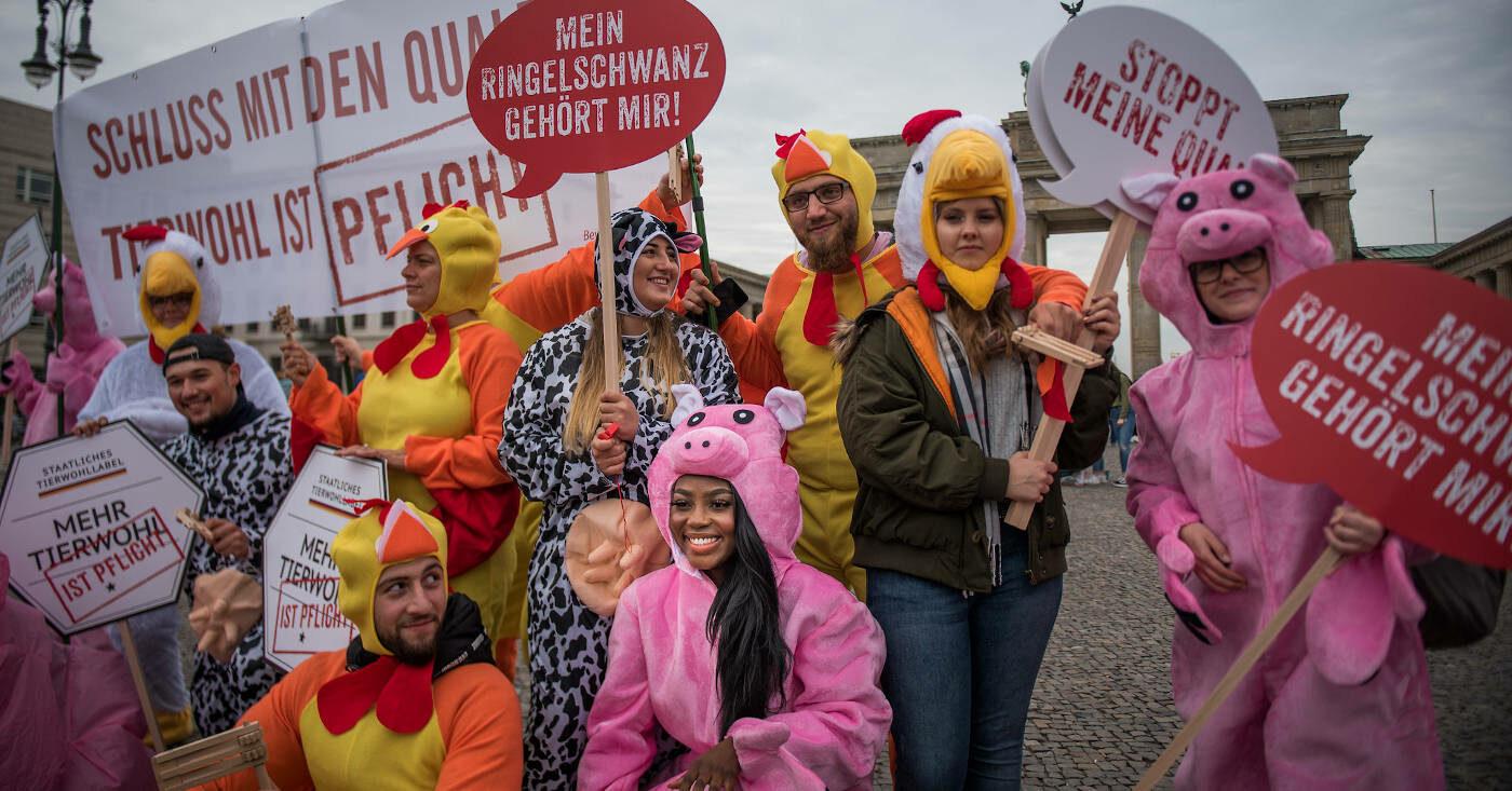 Menschen in Tier-Kostümen demonstrieren für mehr Tierwohl