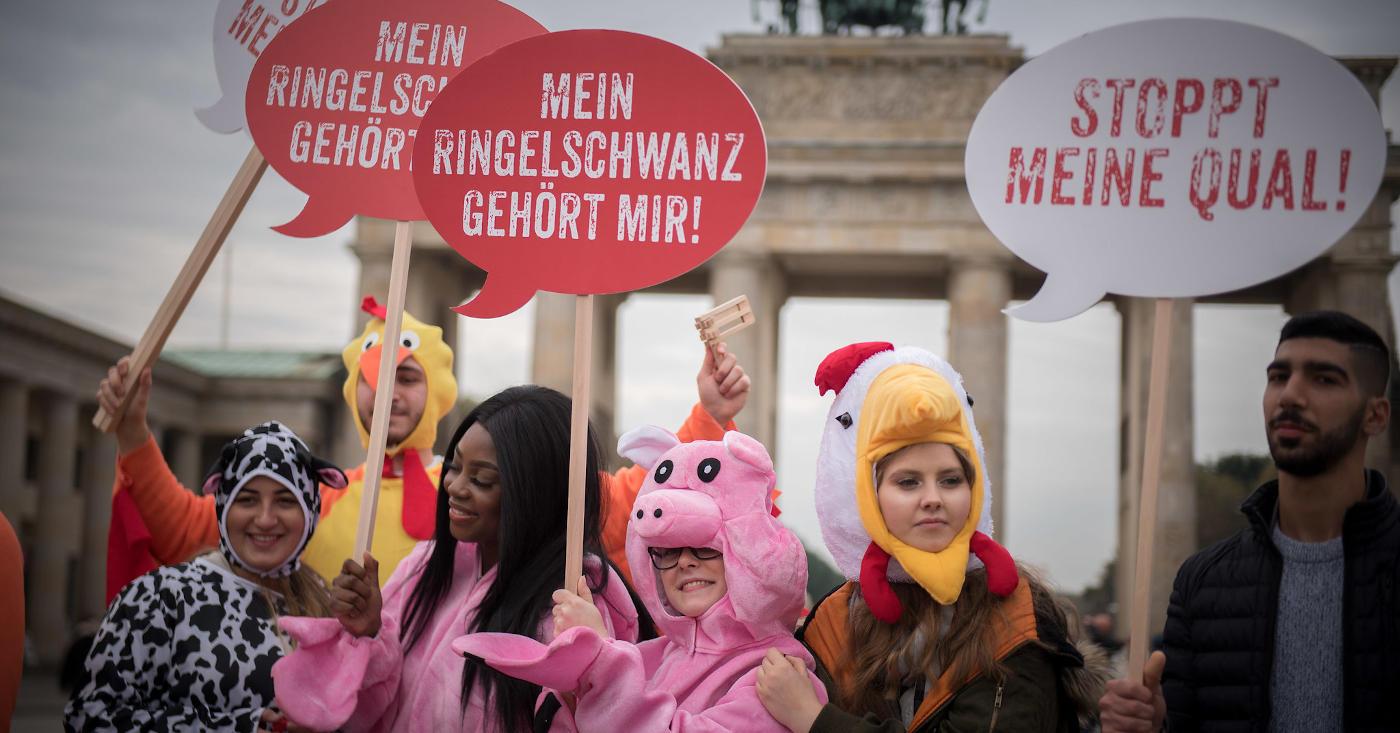 """Menschen in Tier-Kostümen halten Schilder hoch: """"Mein Ringelschwanz gehört mir!"""""""
