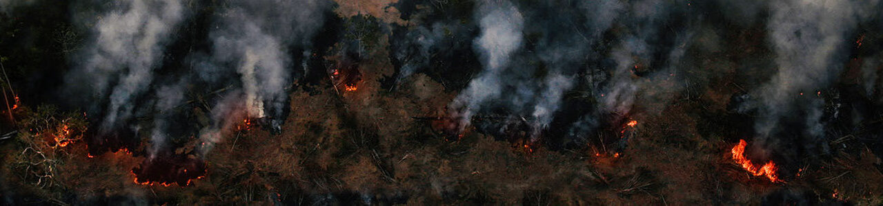 Brennender Amazonas Regenwald