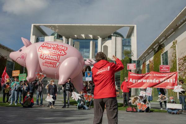 Ein fliegendes Schwein für die Agrarwende