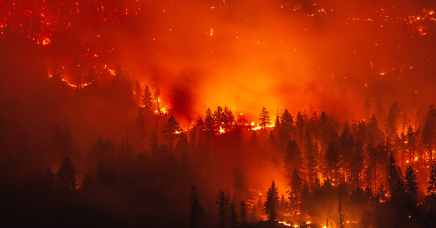 Naturkatastrophe: Man sieht einen Wald, der brennt. Das Bild vom Waldbrand weist darauf hin, dass echter Klimaschutz inklusive Klima-Anpassung gleich Katastrophenschutz ist. Auch deswegen ist es wichtig, für Klima zu stimmen bei der Bundestagswahl 2021. Verlinkt ist ein Artikel mit Fakten und Geschichten von der Süddeutschen Zeitungen, der zeigt, wie Medien über Klimaschutz berichten können. Er beschreibt die konkreten Folgen des Klimawandels, auch hier in Deutschland.