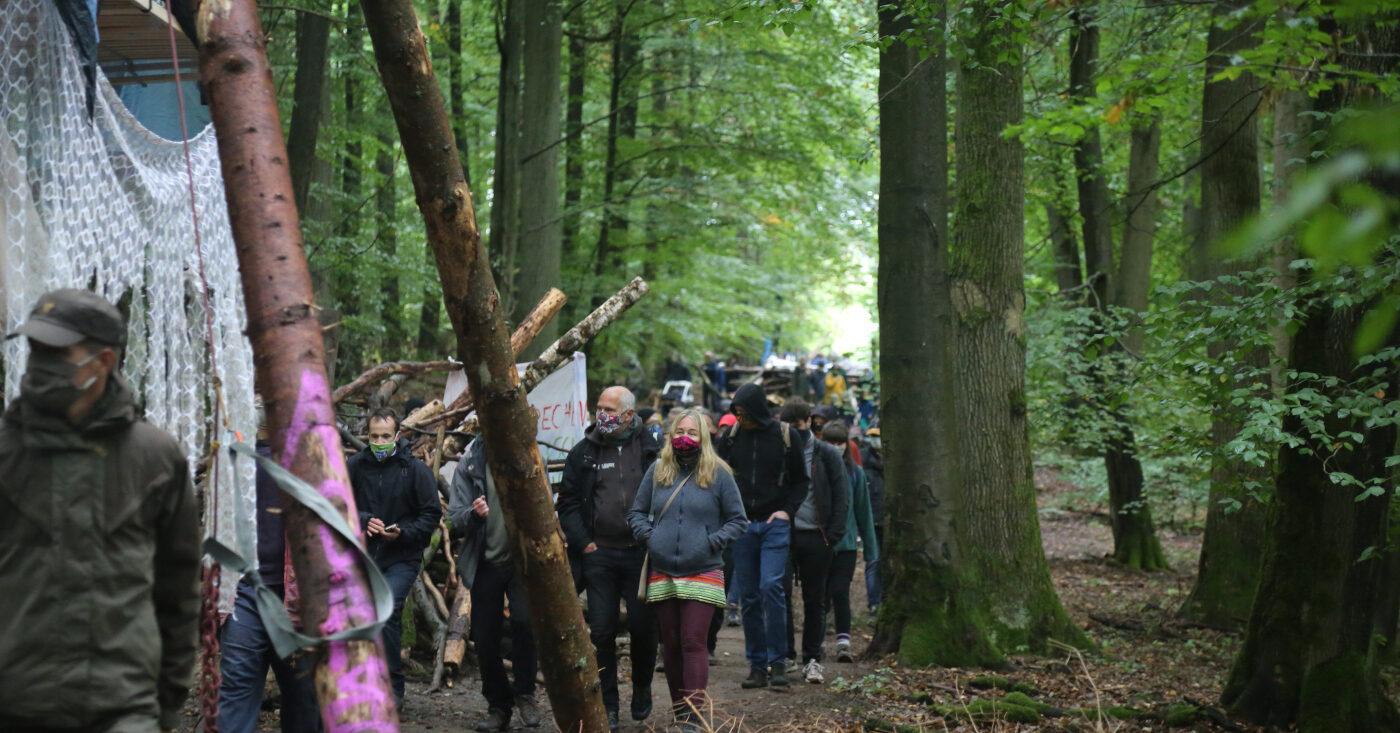 Unterstützen Sie den Wald-Protest