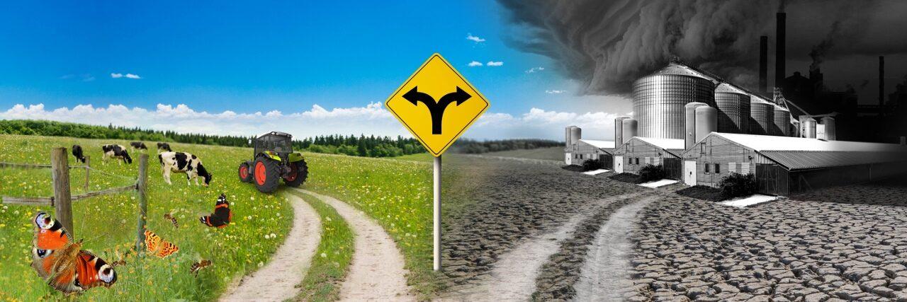 Campact startet einen Appell für eine ökologische Agrarwende im Rahmen der Gemeinsamen Europäischen Agrarpolitik
